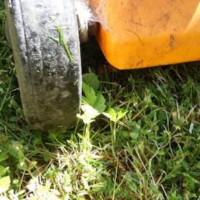 Nærbillede af et hjul fra en græsslåmaskine på en græsplæne