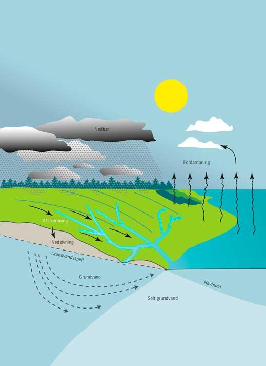Billede af vandets kredsløb