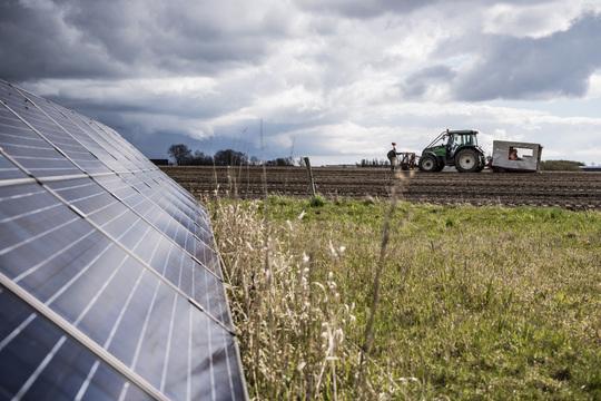 Billede af den nye solcellepark