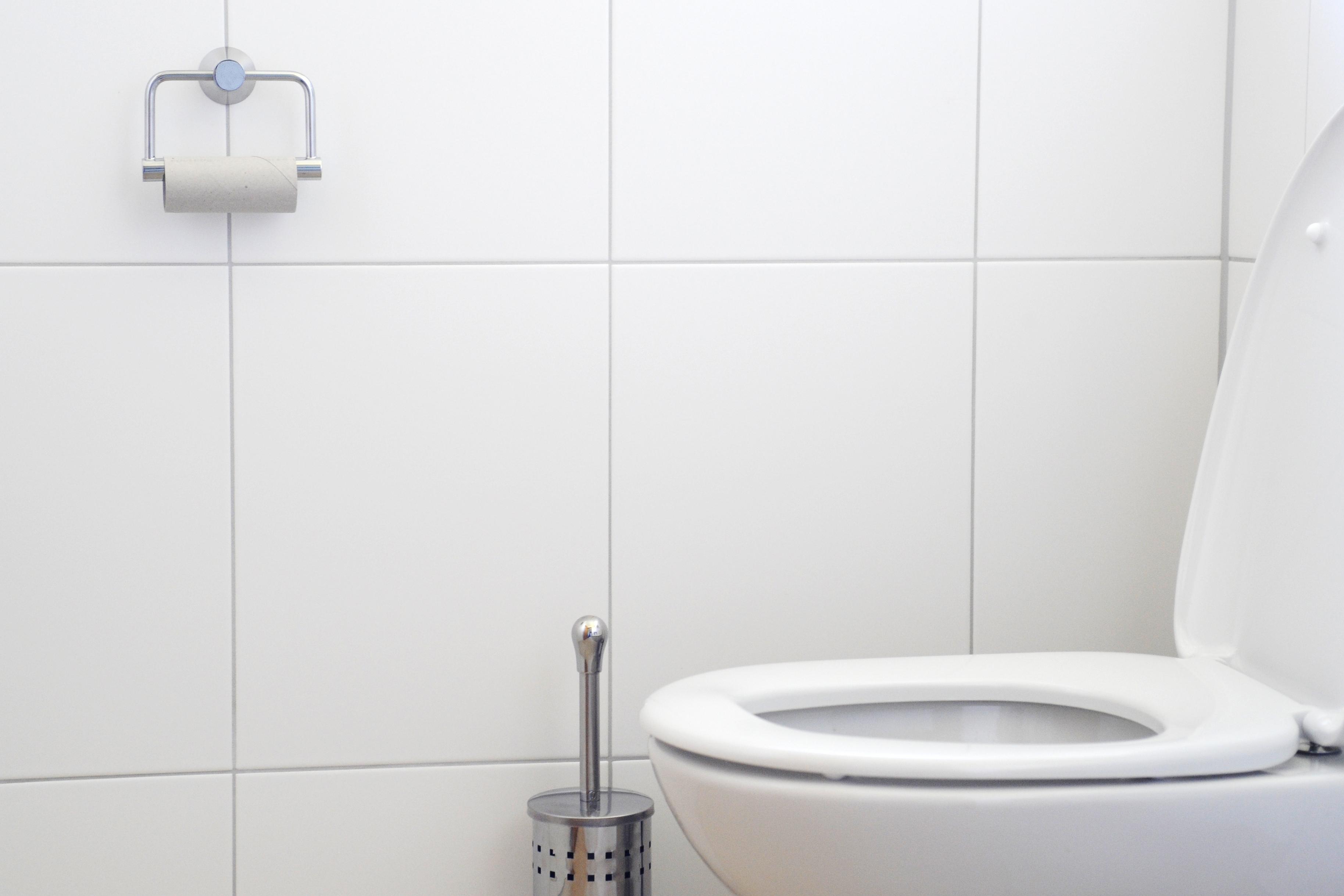 Hvad man må skylle ud i toilettet